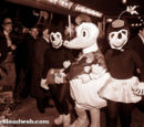 Donald and Daisy Costumes Through the Years