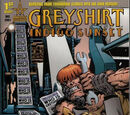 Greyshirt: Indigo Sunset Vol 1 1