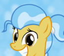 Ask the Vet Pony