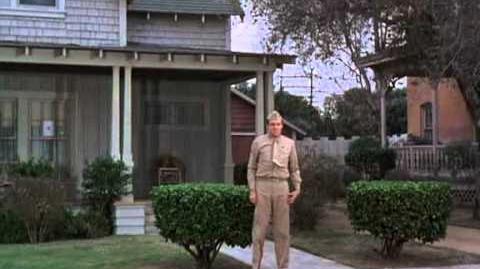 Gomer Pyle, U.S.M.C (S5E23) - I'm Always Chasing Gomers