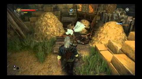 The Witcher 2 Easter Eggs