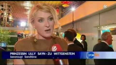 SIVA Nord Süd Dialog 2010 SAT1 TV Report