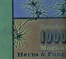 Galerie Mille herbes et champignons magiques