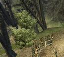 Obóz gońców leśnych koło Geldern