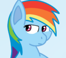 Just Ask Rainbow Dash