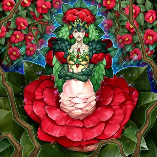 Plant Princess Deck Plant Princess Yu-gi-oh