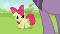 "Apple Bloom ""Hi Twilight"" S2E03"