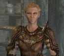 Skyrim: Quests