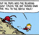 Calvin the Ant