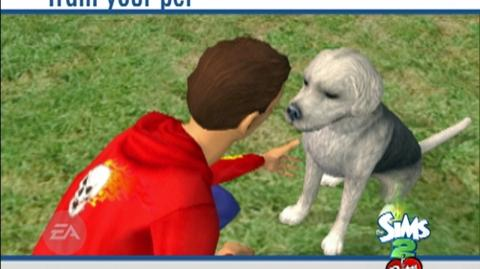 The Sims 2 Pets (VG) (2006) - Mobile, Gameboy Advance, Mac, Nintendo DS, Nintendo Gamecube, PC, PSP, PS2, Wii