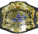 USDW World Heavyweight Championship