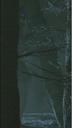 White Walker 2x02.png