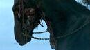 Wight horse 2x10.jpg