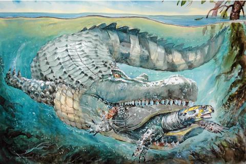 Purussaurus.jpg