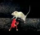 O Relógio Perdido/Ratos e Ratoeiras