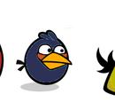 Plain Birds