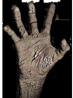 Imagen - Zombie hand.png - The Walking Dead Wiki