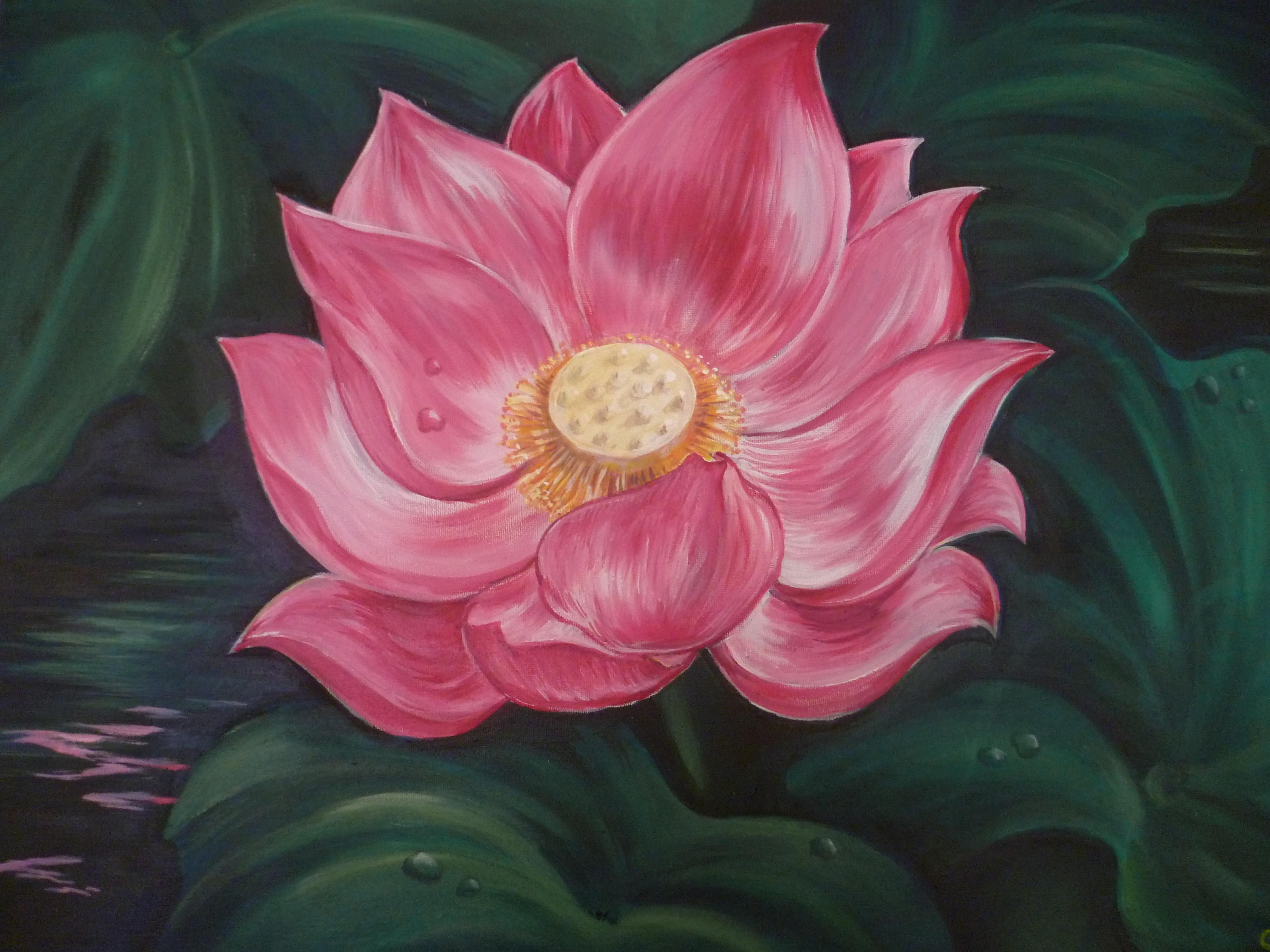 Lotus Tree Wikipedia Mandegarfo