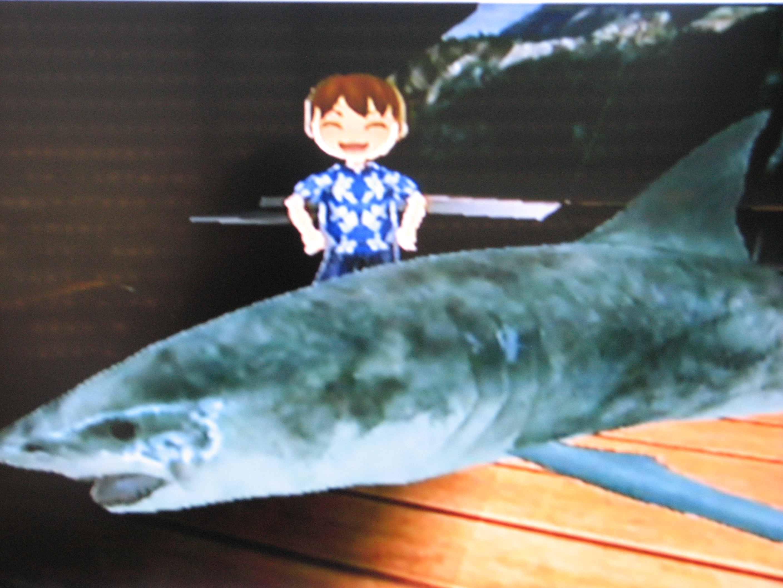 Image Wii Fishing Resort Wiki