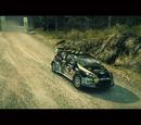 Ford Fiesta Open Class