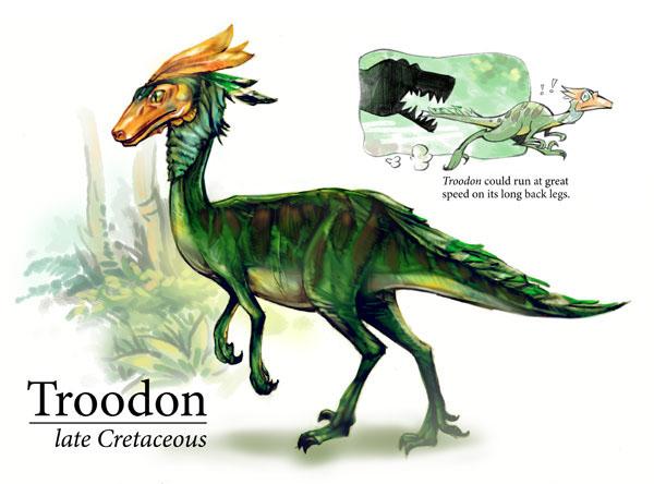 Troodon wiki acam - Dinosaur volant ...