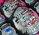 ARW World Tag Team Championships