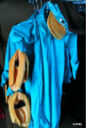 Perry-Halloween-themepark-costume.jpg