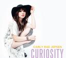 Curiosity (song)
