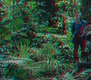 3D Gallery (Predators)