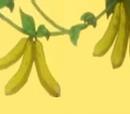 Banana Cucumber