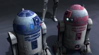 R2-KT meeting