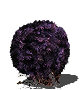 Purple_moss_clump.png
