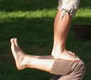 Akrobatiktreffen Kiel