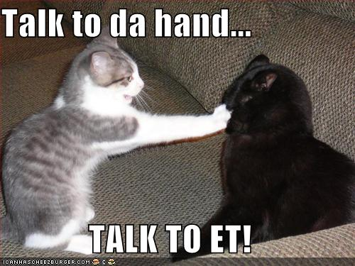 Talk-to-the-hand-lolcat.jpg