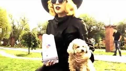 "MONSTERVISION No. 6 FOZZI AND ME in ""Little Paris"""