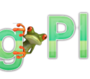 Frog Place Wiki