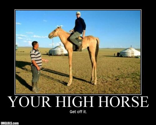 500px-Get-off-your-high-horse.jpg