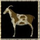 Brown Goat.jpg
