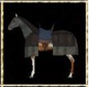 Appaloosa Warhorse.jpg