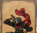 Kirill the Ninja
