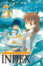 A Certain Magical Index Manga v05 French cover.jpg