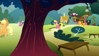 Ponies picking up branches S1E8