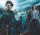 Harry Potter e o Cálice de Fogo (filme)