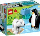 10501 Zoo Friends
