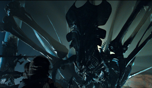 Acheron QueenXenomorph Queen Chestburster