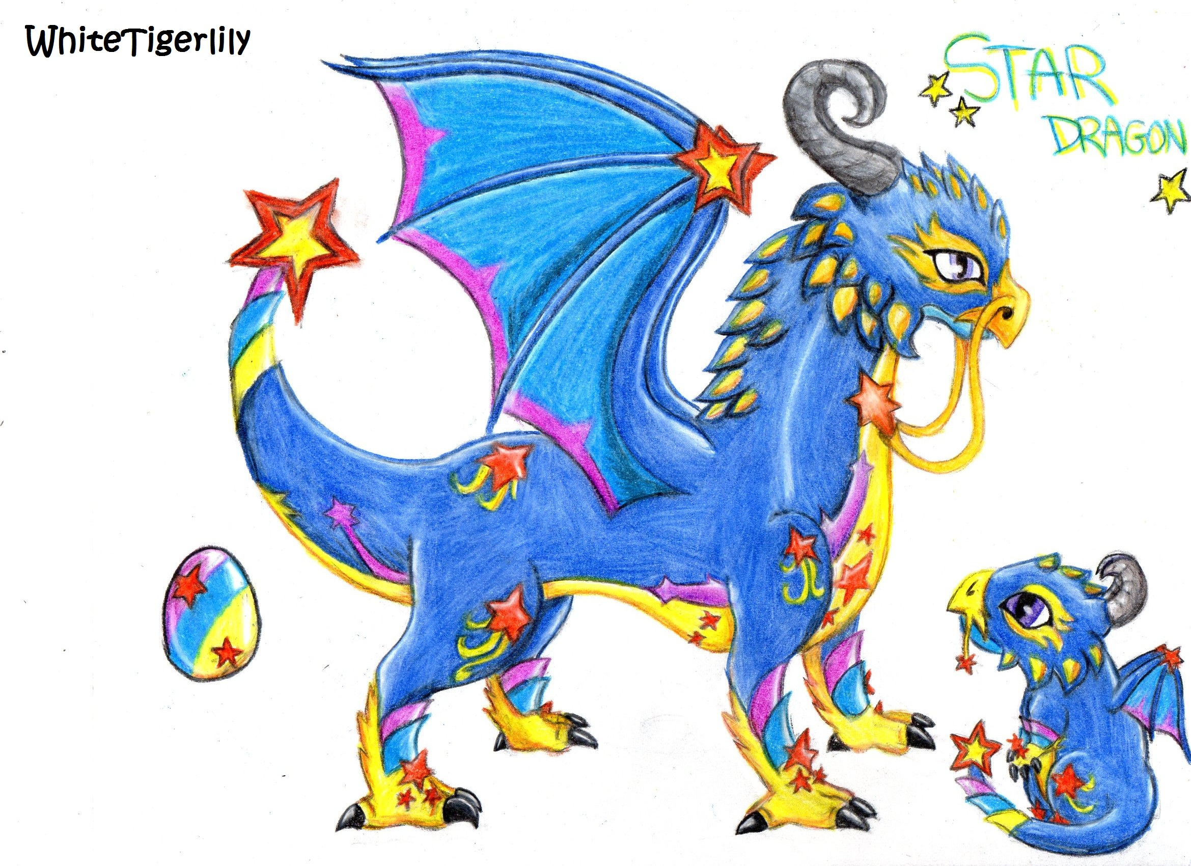 Star Dragons - Viewing Gallery