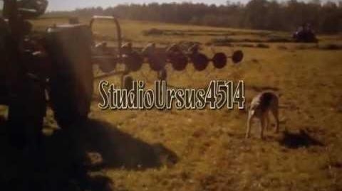 Cold start compilation zimny start - Ursus 4514, T25 i inne