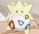 Pokemon de Arukan Serafu