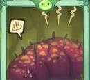 Stink Bug Card