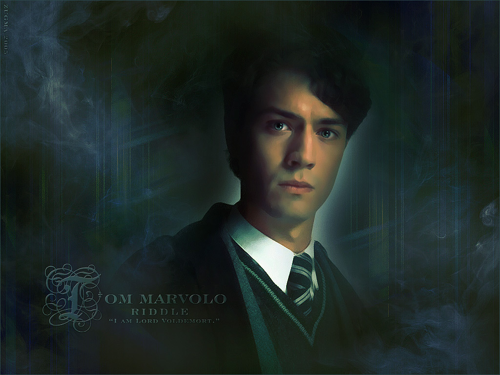 other images tom riddle chamber of secrets actor
